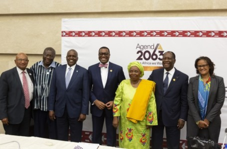 AU Summit: First continental report on implementation of Agenda 2063 unveiled