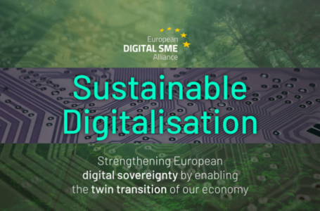 The path to Europe's sustainable digitalisation